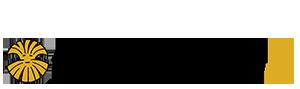 Electric Eccentric Logo